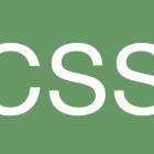 CSS lgo